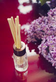 Aroma diffuser with bamboo sticks and lilac Royalty Free Stock Images