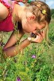 Aroma einer Natur Lizenzfreie Stockbilder