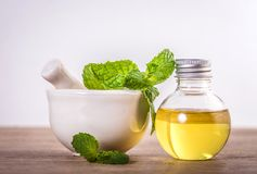 Aroma essential oil from a peppermint in the bottle on the table Royalty Free Stock Photography