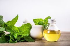 Aroma essential oil from a peppermint in the bottle on the table Stock Image