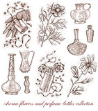 Aroma flowers and perfume bottles collection isolated on white Royalty Free Stock Photography