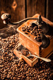 Aroma of fresh coffee grains Stock Image