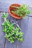 Aroma herb Royalty Free Stock Photo