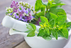 Aroma herb. On a table royalty free stock image