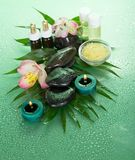 Aroma kit for SPA Stock Image
