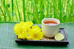 Aroma lemon tea Stock Image