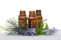 Aroma Oil in Bottles with Lavender, Pine and Mint. Aromatherapy Aroma Oil in Glass Bottles with Lavender, Pine and Mint Royalty Free Stock Photography