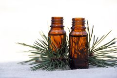 Aroma Oil in Bottles with Pine. Aromatherapy Aroma Oil in Glass Bottles with Pine Royalty Free Stock Photo