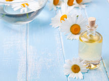 Aroma oil and camomile flowers on the blue wooden background Royalty Free Stock Photos