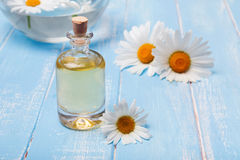 Aroma oil and camomile flowers on blue wooden background Royalty Free Stock Photography