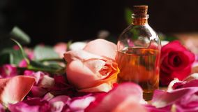 Aroma oil glass bottle among roses and petals on the table, natural raw material, selected focus royalty free stock image