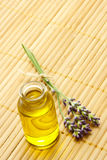 Aroma oil with Lavender. Aroma Oil in Bottle with Lavender Royalty Free Stock Photos