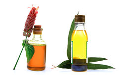 Aroma oils. Beautiful shot of aroma oil bottles on white background Stock Photography