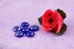Aroma  rose Stock Image