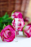 Aroma rose oil (natural perfume) Royalty Free Stock Photo