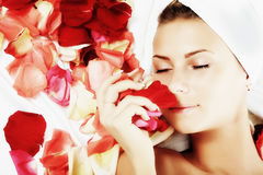 Aroma of roses Stock Image