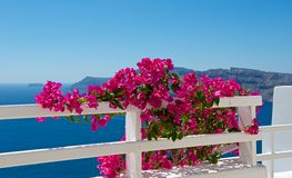 Aroma of Santorini Royalty Free Stock Photography