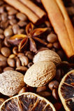 Aroma spice Royalty Free Stock Images