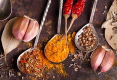 Aroma spice. In spoons and on a table Stock Photo