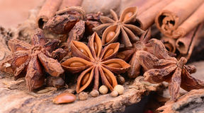 Aroma spices Royalty Free Stock Photography