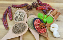 The aroma of spices Stock Images