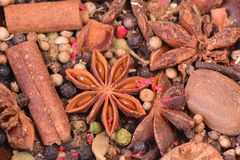 Aroma spices Stock Images