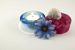 Aroma Therapy. Smooth and vibrant colors Royalty Free Stock Photo