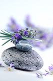 Aroma therapy. Detail of stones and lavander for aroma therapy Stock Image