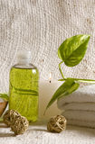Aroma therapy items Stock Image