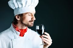 Aroma wine Stock Photography