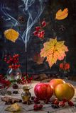 Aromas of autumn. Stock Photography