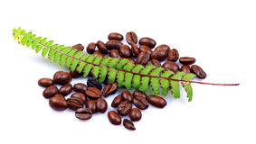 Aromated natural coffee beans Stock Photo