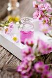 Aromaterapia Immagine Stock Libera da Diritti