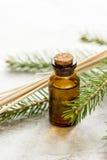 Aromaterapia con gli oli attillati organici in bottiglie di vetro sul fondo bianco della tavola Immagine Stock Libera da Diritti