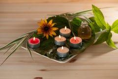 Aromaterapia con le erbe e l'olio immagini stock libere da diritti