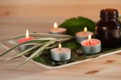 Aromaterapia con le erbe e l'olio fotografia stock libera da diritti