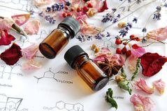Aromaterapia e scienza Fotografie Stock Libere da Diritti