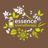 Aromaterapia, fiori e piante royalty illustrazione gratis