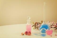 Aromaterapia - fiori e pozioni asciutti Fotografia Stock