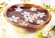 aromathera bowl flowers spa λευκό Στοκ εικόνες με δικαίωμα ελεύθερης χρήσης