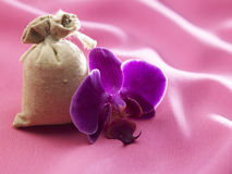 Aromatheraphy Στοκ φωτογραφίες με δικαίωμα ελεύθερης χρήσης