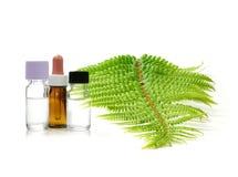 Aromatherapie-Behandlung Lizenzfreies Stockbild