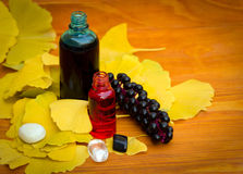 aromatherapy大家 免版税库存图片