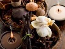 aromatherapy概念温泉 库存照片