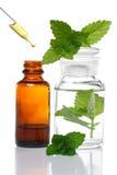 aromatherapy瓶吸管草药 免版税库存照片