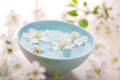 aromatherapy花温泉春天 图库摄影