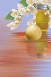 aromatherapy茉莉花 免版税库存图片
