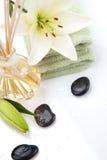 aromatherapy καθορισμένη SPA Στοκ Εικόνα