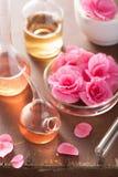 Aromatherapy και αλχημεία με τα ρόδινα λουλούδια Στοκ φωτογραφία με δικαίωμα ελεύθερης χρήσης