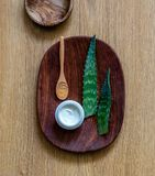 Aromatherapy και ευημερία με aloe τα φύλλα της Βέρα για το σπιτικό πήκτωμα Στοκ φωτογραφία με δικαίωμα ελεύθερης χρήσης